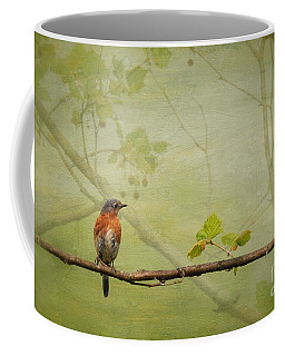 Until Spring Coffee Mug