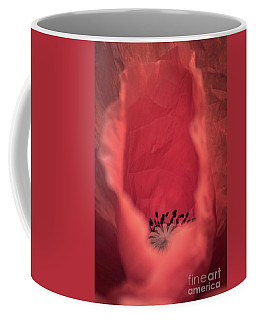 Coffee Mug featuring the photograph Untouched by Hannes Cmarits