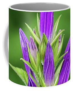 Unwinding Coffee Mug