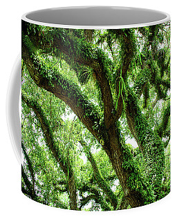Up Among The Trees Coffee Mug
