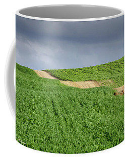 Up And Down On The Way Up Coffee Mug by Arik Baltinester