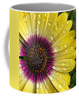 Daisy Up Close  Coffee Mug