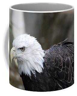 Up Close With A Bald Eagle Coffee Mug