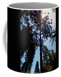 Up In The Sky Trees Coffee Mug