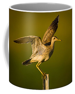 Upland Sandpiper On Steel Post Coffee Mug
