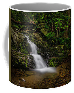 Coffee Mug featuring the photograph Upper Falls On Doyle River by Ronald Santini
