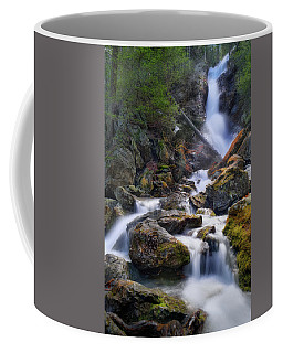 Coffee Mug featuring the photograph Upper Race Brook Falls 2017 by Bill Wakeley