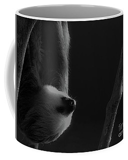 Upside Down Sloth Coffee Mug