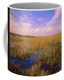 Usa, Florida, Everglades National Park Coffee Mug