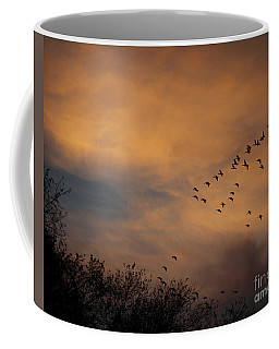V Formation At Sunset  Coffee Mug by Kathy M Krause