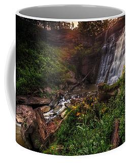 Valley Of Golden Light Coffee Mug