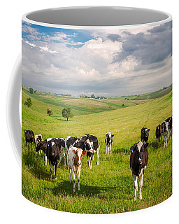 Valley Of The Cows Coffee Mug