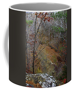 Valley View Coffee Mug