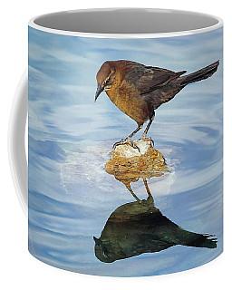 Coffee Mug featuring the photograph Vanity by Elaine Malott