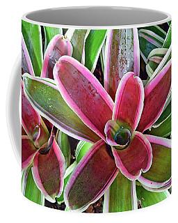 Variegated Vase Plant No. 2-1 Coffee Mug