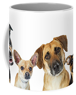 Various Dogs Horizontal Web Banner Coffee Mug