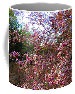 Vekol Wash Desert Ironwood In Bloom Coffee Mug