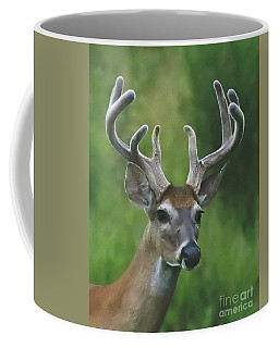 Velvet Beauty Coffee Mug