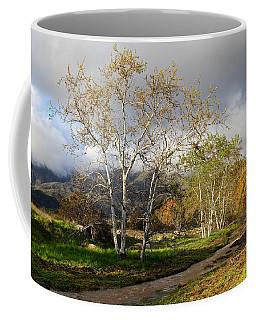 Ventura River Preserve Winter 2017 Coffee Mug