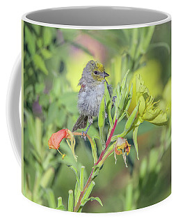 Verdin 5883-092517-1 Coffee Mug