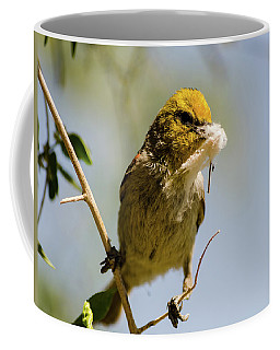 Verdin Building A Nest Coffee Mug