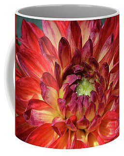 Variegated Dahlia Beauty Coffee Mug