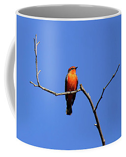 Vermillion Flycatcher Coffee Mug