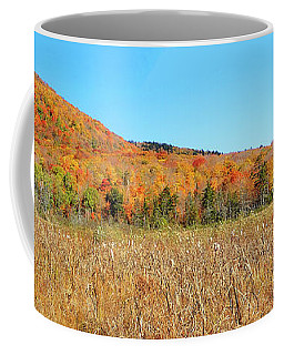 Vermont Foliage 1 Coffee Mug