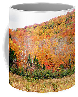 Vermont Foliage Coffee Mug