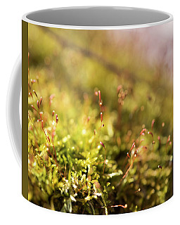 Vernal Impression Coffee Mug
