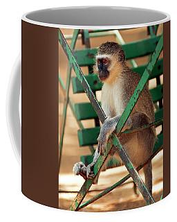 Vervet Monkey Coffee Mug