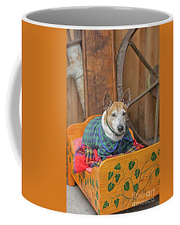 Coffee Mug featuring the photograph Very Old Pet Dog In Clothes On Own Bed by Patricia Hofmeester
