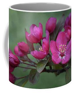 Vibrant Blooms Coffee Mug by Ann Bridges