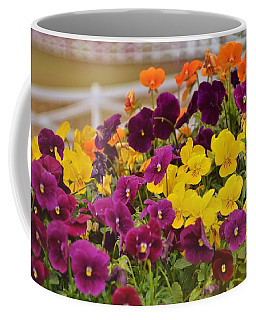 Vibrant Violas Coffee Mug by JAMART Photography