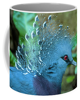 Coffee Mug featuring the photograph Victoria Crowned Pigeon by Daniel Hebard