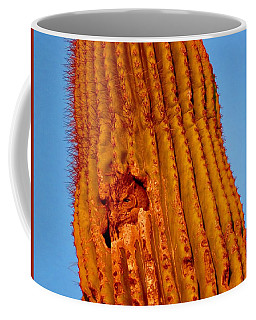 Victor's Golden Hour Coffee Mug