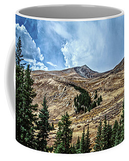 View From Guanella Pass Road Coffee Mug