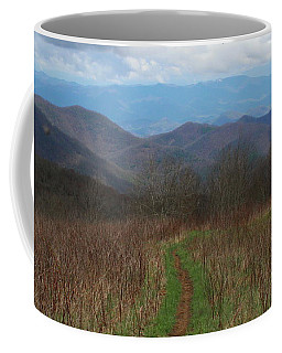 View From Silers Bald 2015a Coffee Mug