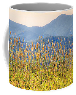 Coffee Mug featuring the photograph View From The Tent by Alan L Graham