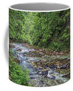 Coffee Mug featuring the photograph View In Vintgar Gorge - Slovenia by Stuart Litoff
