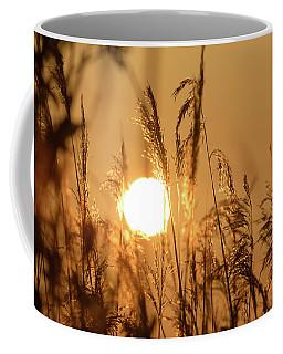 View Of Sun Setting Behind Long Grass B Coffee Mug