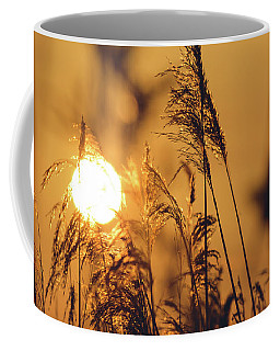 View Of Sun Setting Behind Long Grass C Coffee Mug