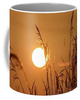 Coffee Mug featuring the photograph View Of Sun Setting Behind Long Grass E by Jacek Wojnarowski