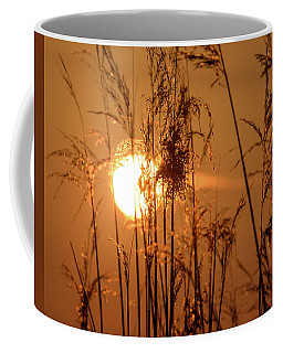 Coffee Mug featuring the photograph View Of Sun Setting Behind Long Grass F by Jacek Wojnarowski