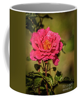 Coffee Mug featuring the photograph Vignetted  Rose by Robert Bales