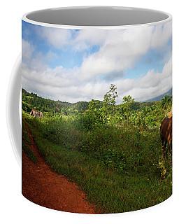 Vinales Valley II Coffee Mug