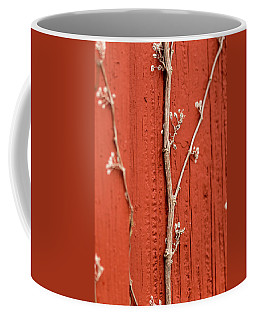 Coffee Mug featuring the photograph Vine by Jay Stockhaus