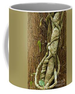 Coffee Mug featuring the photograph Vine by Werner Padarin