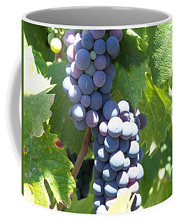 Vino On The Way Coffee Mug