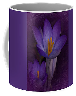 Vintage Crocus 2017 Coffee Mug
